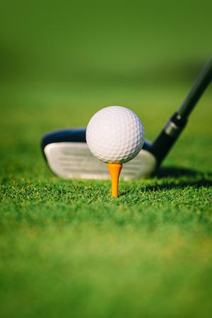 Golf ball on tee 스톡 콘텐츠