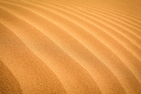desert sand: Sand desert