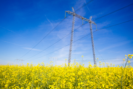 flare stack: Electricity pylons in a field of rape