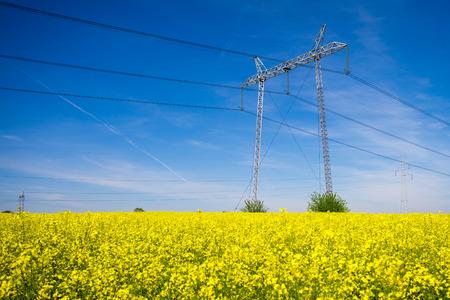 torres el�ctricas: Las torres de electricidad en un campo de la violaci�n