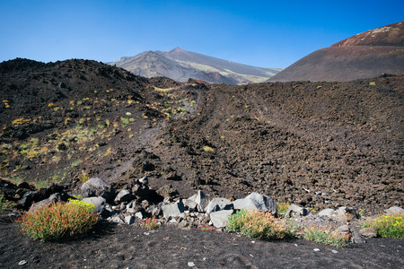 volcanic rock: Volcanic rock on Etna, Italy