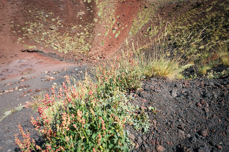 craters: Etna volcano craters in Sicily, Italy Stock Photo