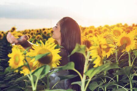 Beautiful girl enjoying nature on the field of sunflowers at sunset Standard-Bild