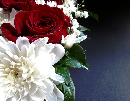 Red roses and white chrysanthemums