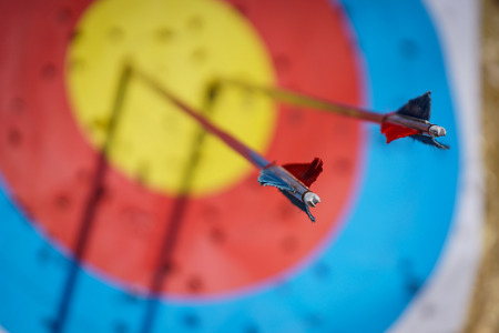Arrows in archery target on archery range Banco de Imagens - 93773046