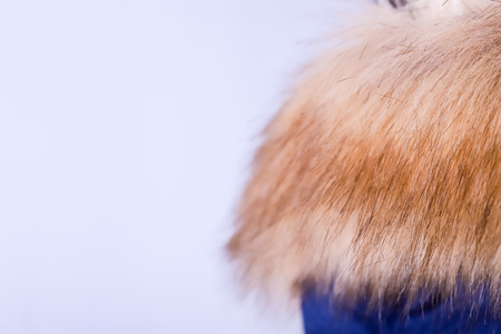 Close up of blue jacket with fur , winter fashion outfit. Jacket isolated on white background.