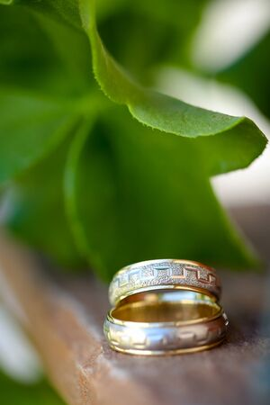 Close up of two wedding rings on wood with green leaf in background