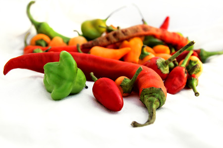 hottest: Small spicy chili peppers of different colours on white background