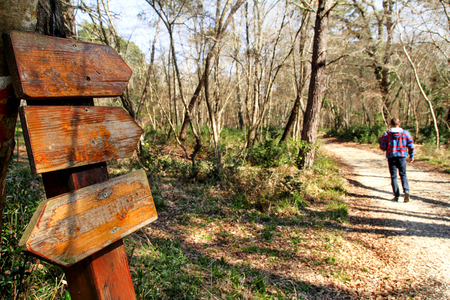 A signpost by the roadside in the nature of forest. The man passerby walking woods. Signpost along the road in a beautiful natural environment of the forest. Stock Photo
