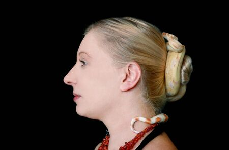 Snake on female head. Non poisonous Boa constrictor albino species of snake slithering and crawls over her hair and wraps herself around tuft hair of woman blonde hairstyle as decoration on her head.