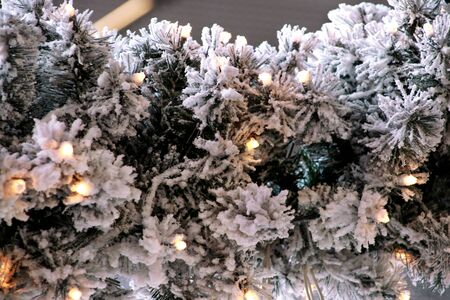 Traditional Christmas flashing lights on green twigs tree of pine covered with snow layer in winter. Fir tree branches with string rice lights bulbs. Ornaments to christmas celebration, holiday scene.