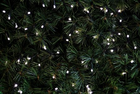 Traditional Christmas flashing lights hanging on green twigs tree of pine as decorated background. Fir tree branches with string rice lights bulbs. Ornaments to christmas celebration, holiday scene. Reklamní fotografie
