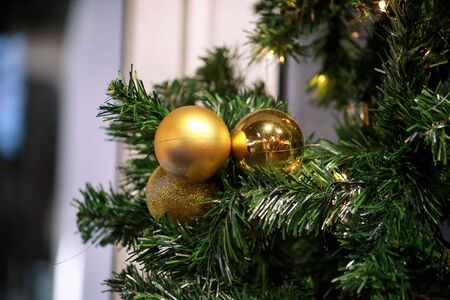 Traditional decorated baubles hangs on green twigs tree of pine. Bright gold balls on Christmas tree of fir or spruce with string rice lights bulbs. Ornaments to christmas celebration, holiday scene.