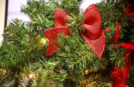 Traditional decorated bows hangs on green twigs tree of pine, close up. Big red bow on Christmas tree of fir or spruce with string rice lights bulbs. Ornaments to christmas celebration, holiday scene.