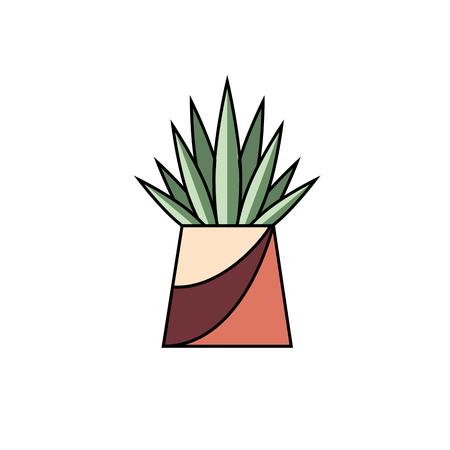 Potted succulent vector illustration. Ilustração