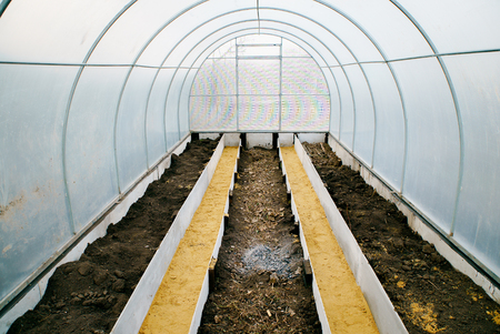 polycarbonate: Polycarbonate greenhouse inside early spring Stock Photo