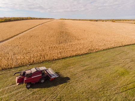 Harvesting Corn in Fall skyline Aerial, Shooting from air