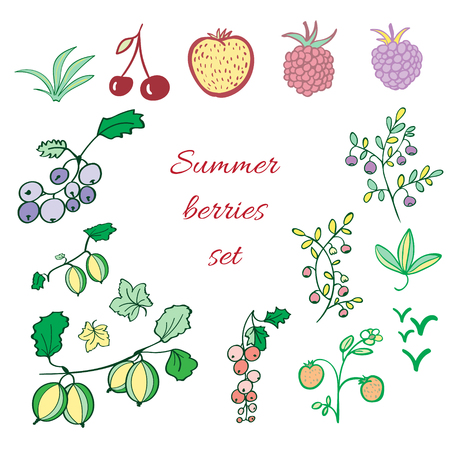 Set of summer berries. Raspberry, blackberry, cranberry, blueberry, cherry, strawberry, gooseberry elements. Bright colors Illusztráció