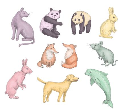 Animal collection. Cat, panda, rabbit, fox, mouse, hare, dog, dolphin elements. Ink hand drawn isolated animal illustration. Digital paiting Reklamní fotografie