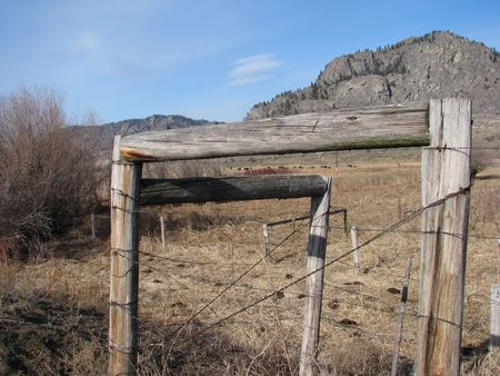 cattle wires: rustic fence on boundary of cattle grazing land in Okanagan area