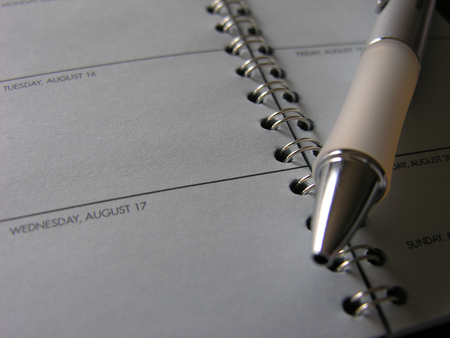 appointment book: Pen Lying Across Open Page of Appointment Book, Close Up of Day Timer with Blank Spaces - Concept Image Illustrating Scheduling and Availability Stock Photo