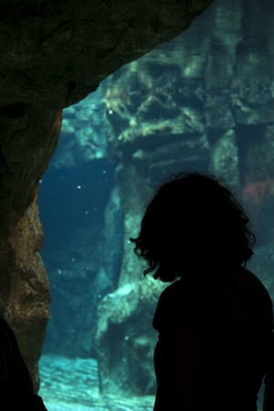 Backlit silhouette of a woman in an aquarium photo