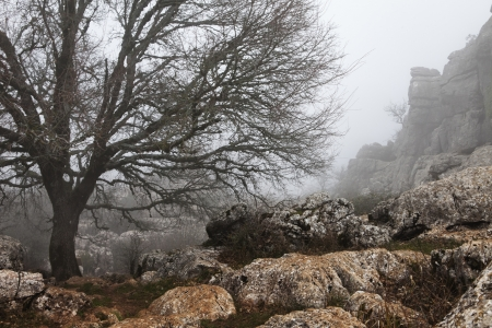 Winter landschap in de Torcal - Malaga Stockfoto