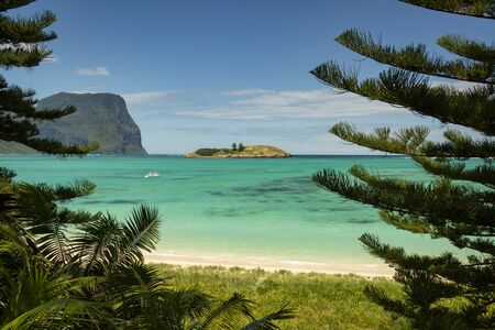 View of Lord Howe Island near Lovers Bay beach framed by pine trees with pristine turquoise and blue water, coral reefs and Mount Gower peaking into the background. Lord Howe Island in the Tasman Sea. Stock fotó