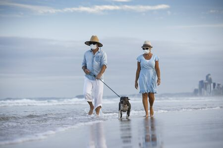 a couple with medical masks walking an english blue staffy dog, seaside on a beautiful beach. walking dog concept or staying active in a coronavirus pandemic Stock Photo