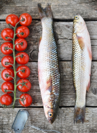 grey mullet:  raw mullet with cherry tomatoes