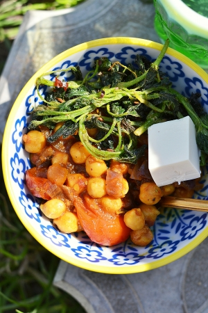 Indian  chickpea curry with tofu  photo