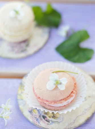 French  macarons on the wooden background photo