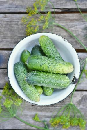 fresh,green organik cucumber on the wooden background