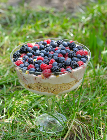 trifle: trifle  dessert with wild berries.image is tinted