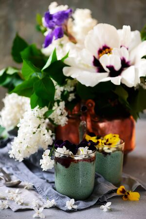 Spirulina chia pudding with berry sauce.selective focus Banque d'images