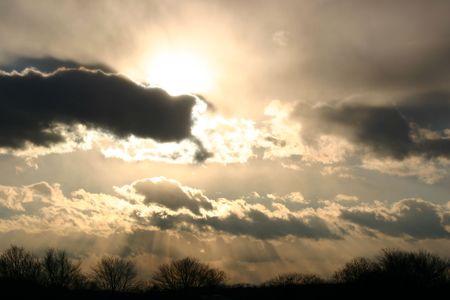 Gray winter sky over bare trees