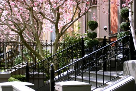 ironwork: a typical Bostonian garden area