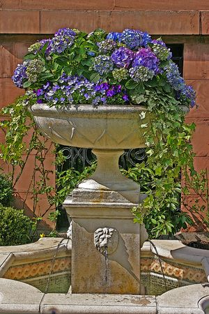 Illustration of a stone fountain topped with hydrangeas