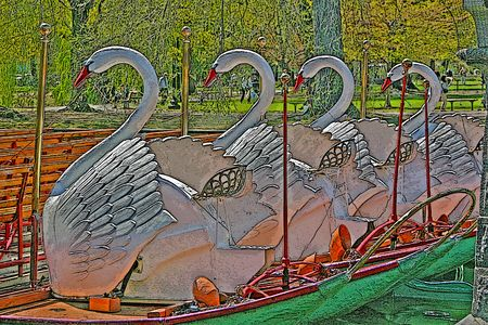Illustration of the swan end of the Boston Swan Boats lined up in a row