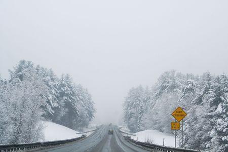 Deer Crossing sign by snowy highway Reklamní fotografie