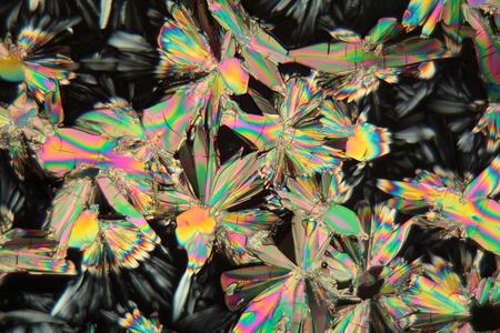 Malic acid under the microscope Stock Photo