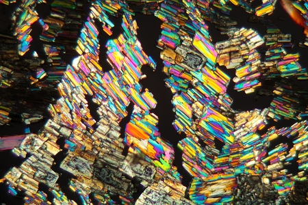 microscope slide: Alanine is a amino acid which occurs in the human body. The photo is made with a magnification of 100x and in polarized light. The sample is pure Alanine precipitated from a solution on a microscope slide.
