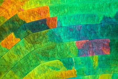 Zwavel kristallen onder de microscoop met een vergroting van 100 maal en in gepolariseerd licht.