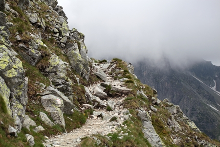 Path in the Carpathian Mountains in Slovakia.