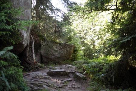 南ドイツのフィヒテル山地の大き...