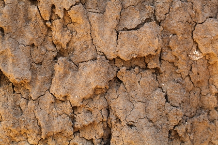 ooze: Dry earth with cracks, as texture or background. Stock Photo