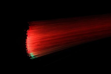 illuminated: A macro photo of illuminated optical fibers.