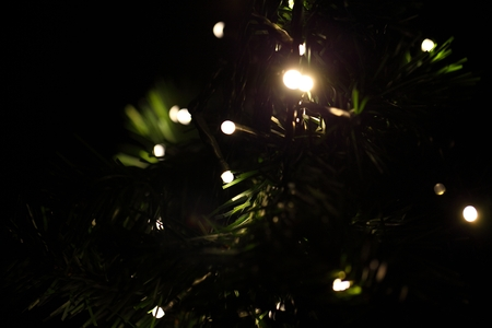 christmassy: Light, glow, dark, green, Christmas, tree, needles, Christmassy, illuminated, close, rural, structure, ornament, artificial, culture, Stock Photo