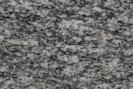 labradorite: Macro photo of the surface of a grey paragneis.