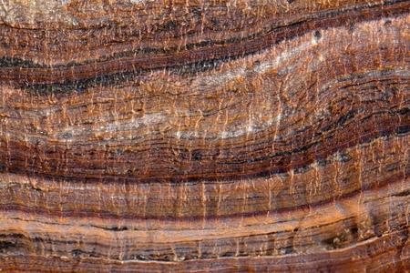 Oppervlak van carbonaat rock met verwering structuren (micro karst), Tertiair uit Italië.